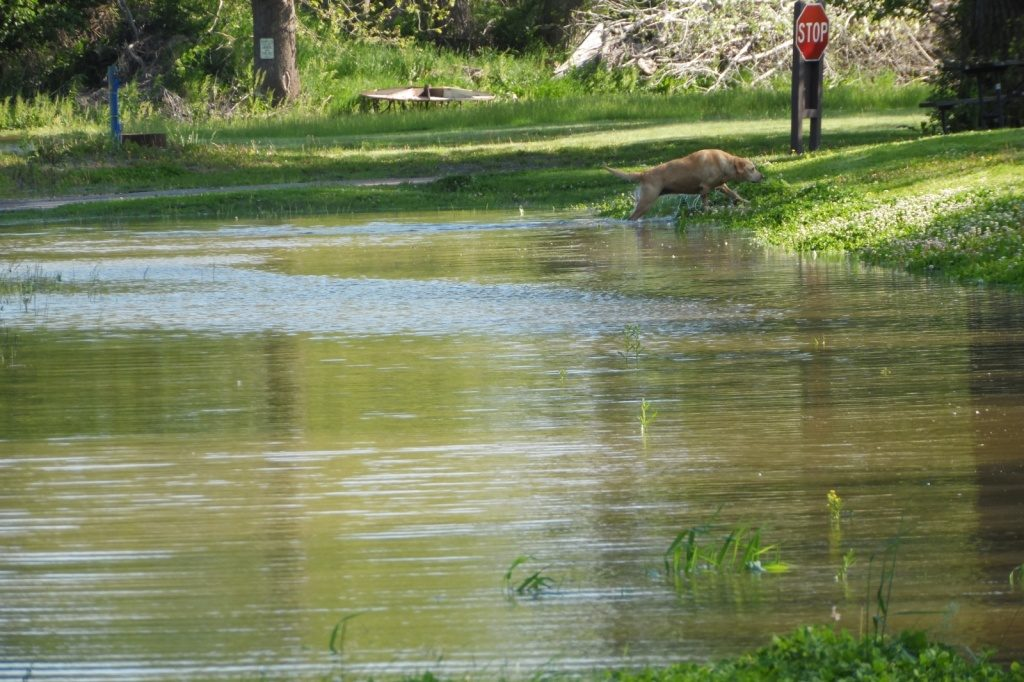 Riverview Marina State Recreation Area reopens after flooding