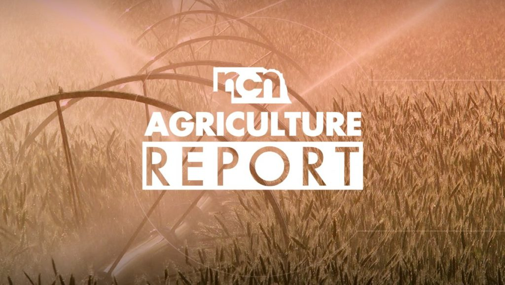 Ag news August 7th 2018 afternoon