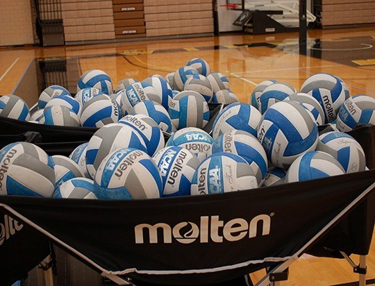Wynot Qualifies For State Volleyball, Hartington-Newcastle Eliminated
