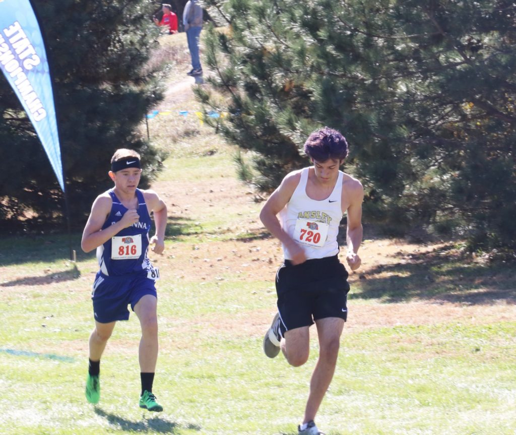 Champions Crowned at NSAA Cross Country Championships