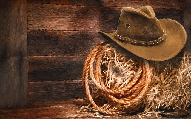 Comstock To Host 13th Annual Cowboy Poetry & Music Gathering