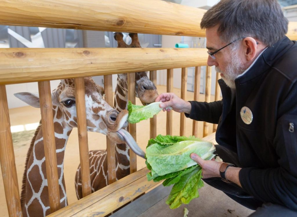 Lincoln Children's Zoo expansion will be even bigger thanks to influx of donations