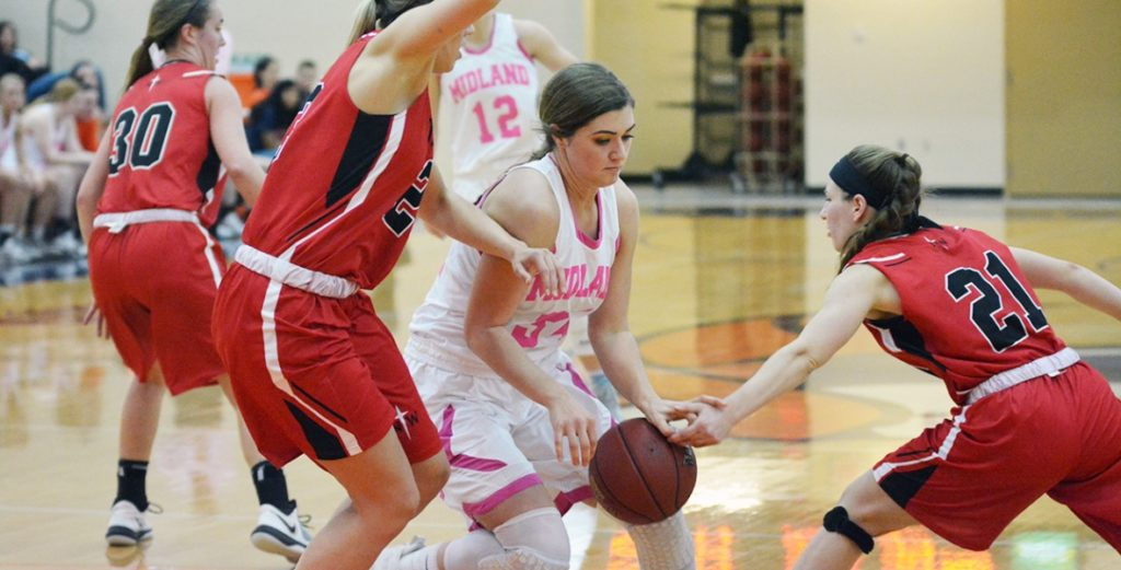 Lady Warriors Fall to No. 2 Northwester in GPAC Quarterfinals