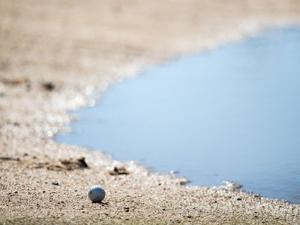 Class B boys golf state tournament moves locations due to flooding in Columbus