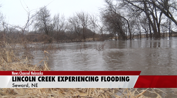 Lincoln Creek Floods Near Seward