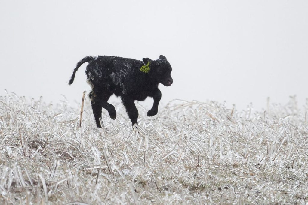 Life-threatening blizzard bears down on state; flood risk less serious