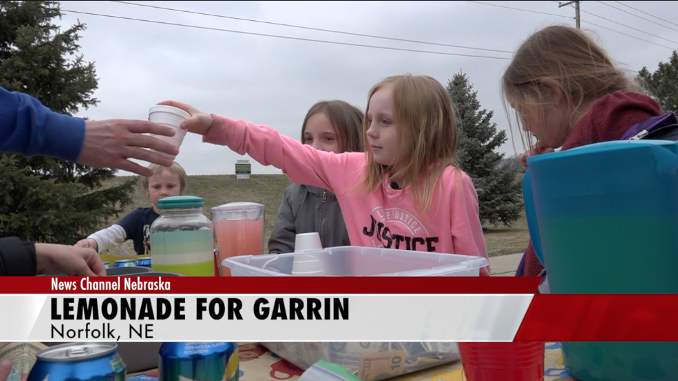 Norfolk girl uses lemonade stand to help baby brother