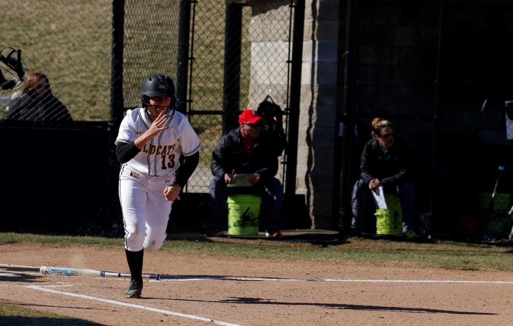 Extra-Inning Victory Allows Wayne State Softball To Split Friday Doubleheader