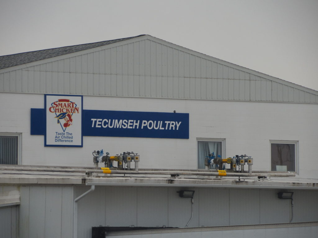 Tecumseh Woman Suspected Of Arson At Tecumseh Poultry