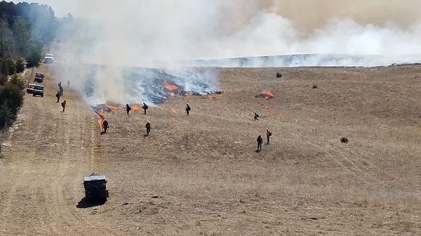 Controlled Burn Planned At Bessey Ranger District Today