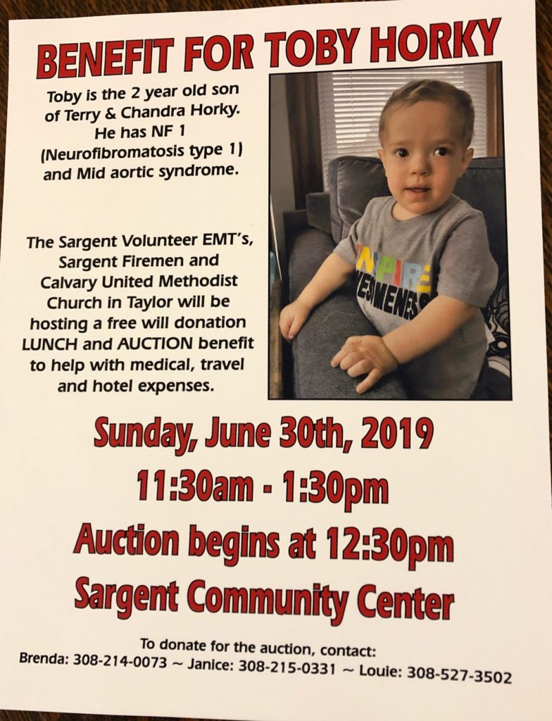 Benefit for 2-Year-Old Toby Horky this Sunday in Sargent