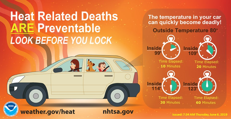 Look Before You Lock: Never Leave Children or Pets in the Car