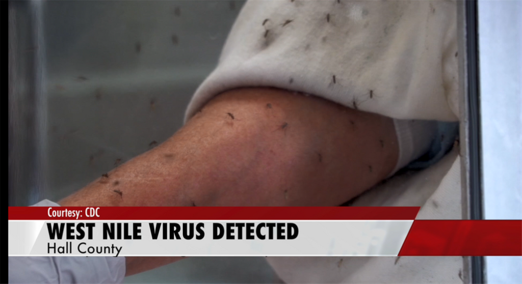 West Nile virus detected in Hall County