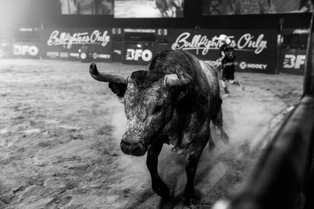 Bullfighters Only Is A Show You Do Not Want To Miss; July 30 At The Custer County Fairgrounds
