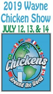 Highlighted Chicken Show Activities