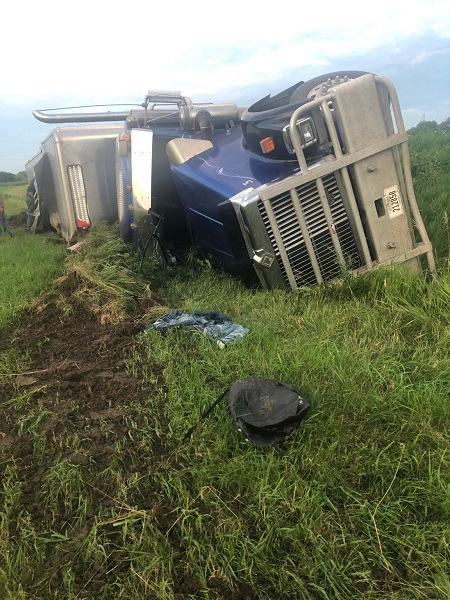 One Steer Put Down After Semi And Trailer Overturns On Sargent Road