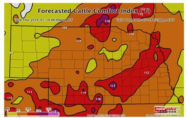 As The Heat Index Rises, Cattle Producers Need To Take The Proper Steps To Ensure Cattle Safety