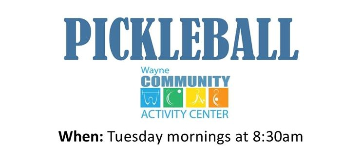 Activity Center To Feature Pickleball Tuesday's