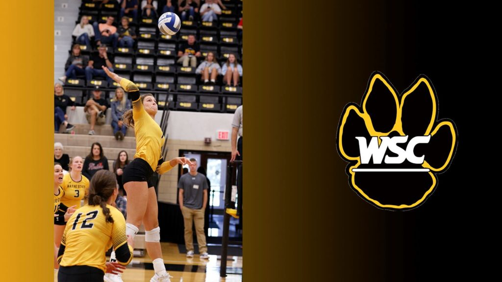 Preseason Coaches' Poll Tabs Wayne State Volleyball Fourth