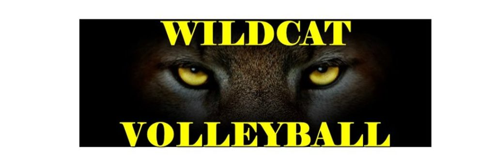 22nd Ranked Wildcat Volleyball Travels To Florida