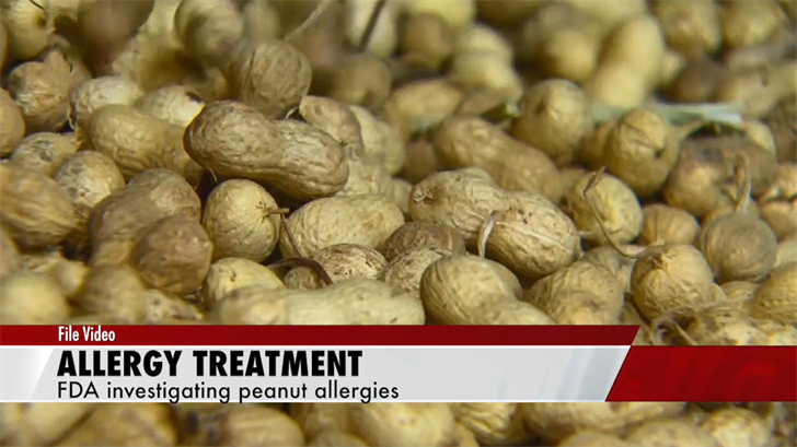 FDA panel to review first peanut allergy treatment