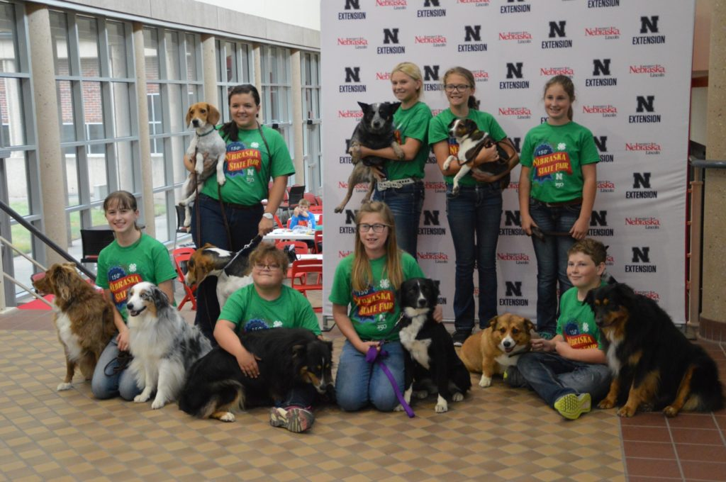 State Dog Show Results For Custer County Kids