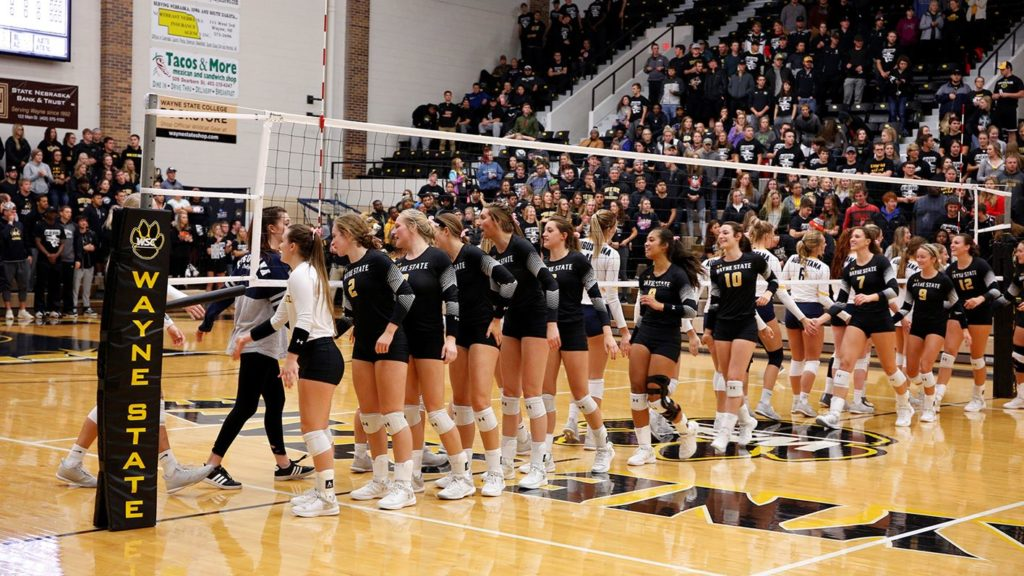Wildcat Volleyball Opens Shark Invite With Two Wins