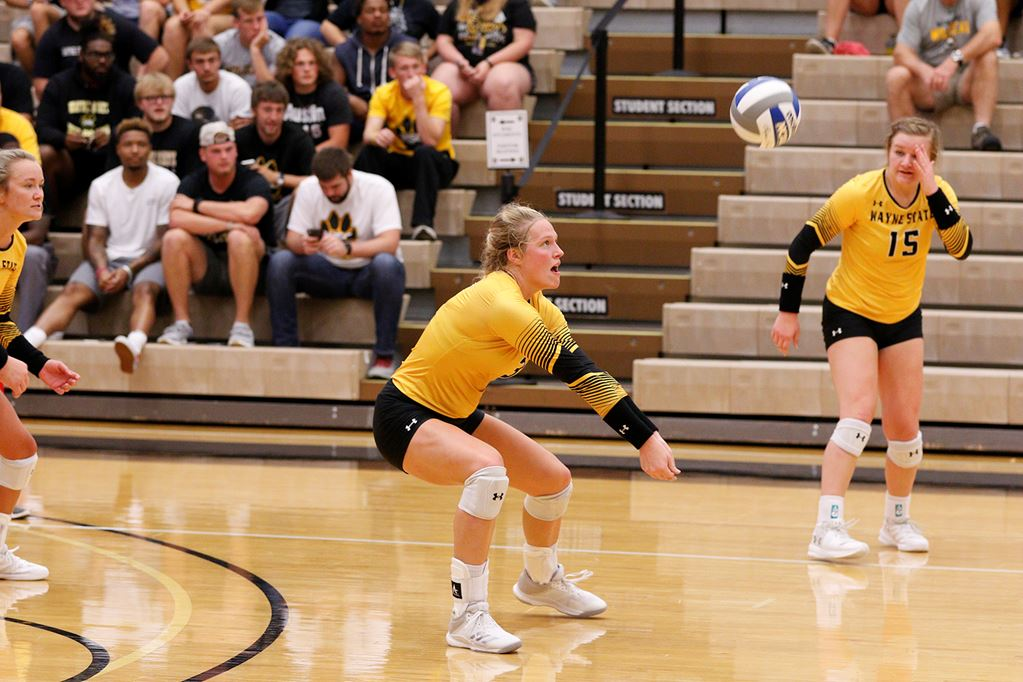 Wildcat Volleyball Stays Perfect At Home