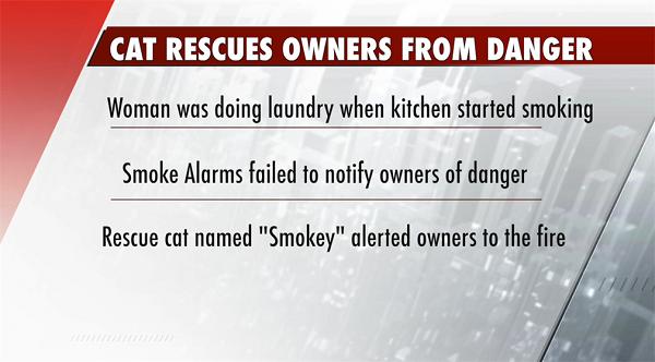 Four-legged fire alarm saved elderly couple