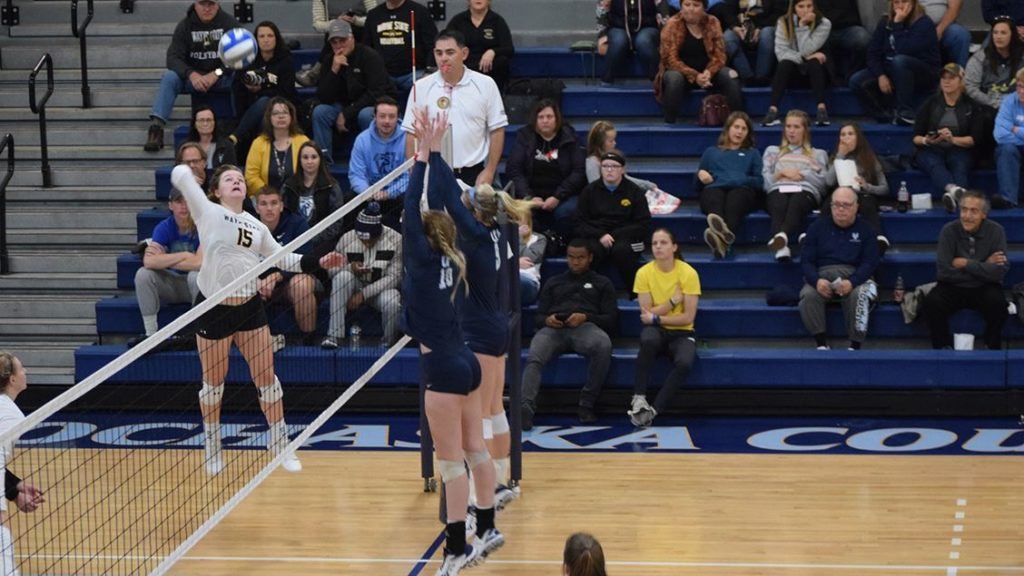 Wildcat Volleyball Rallies In Five, Take Down #18 Upper Iowa