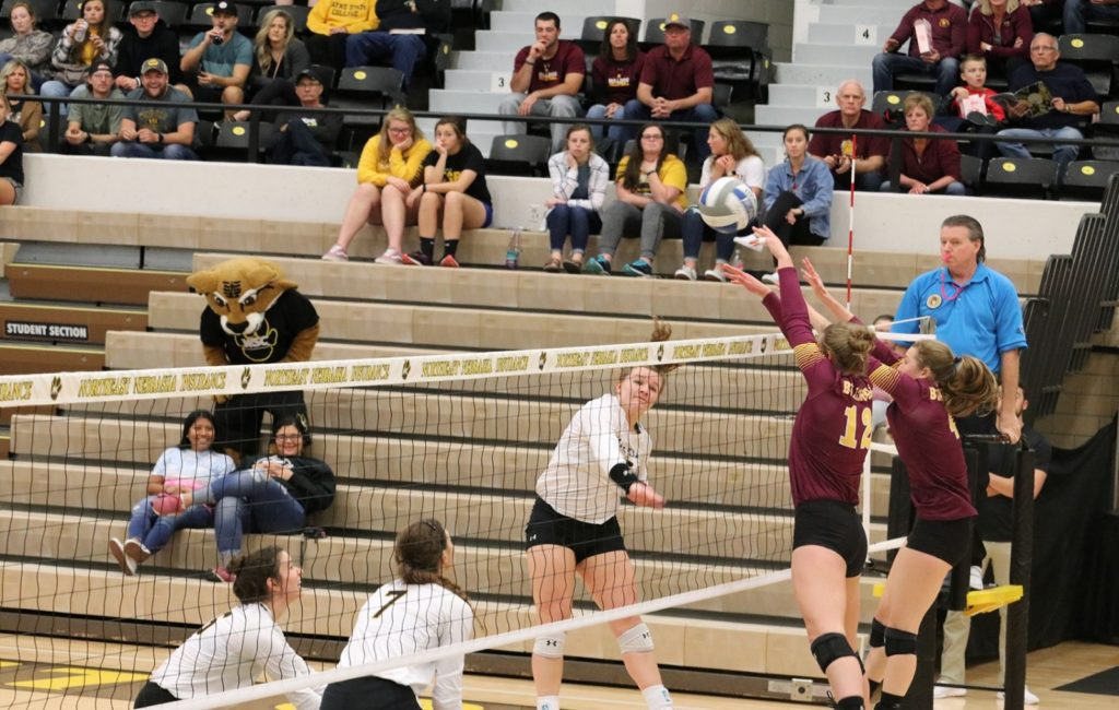 #7 Minnesota Duluth Holds Off #11 Wayne State In Five-Sets