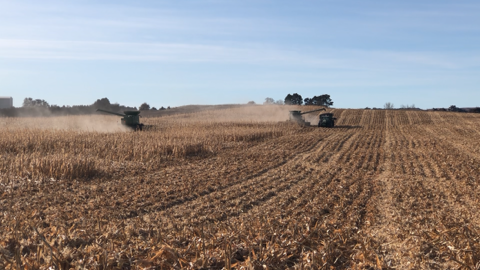 Pat Downey Harvest Day: Area Farmers Help Harvest After Pat Suddenly Passes Away