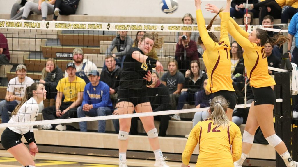 Northern Ends WSC Volleyball Winning Streak, 'Cats Earn #5 Seed In Conference Tourney