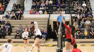 Wildcat Volleyball Extends Winning Streak With 18 Consecutive Sets Won