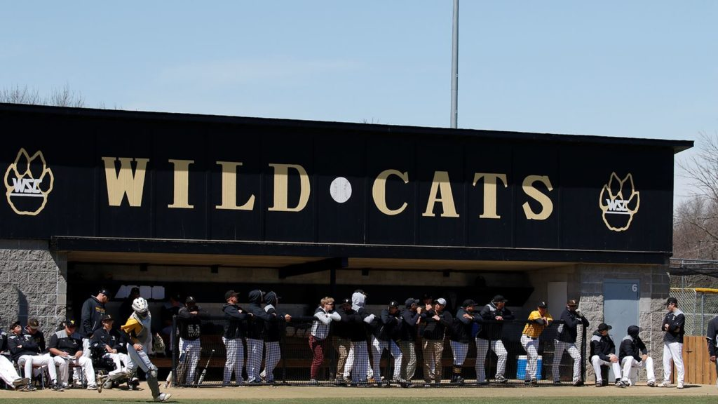 NCAA Early Signing Period Brings In Nine For Wildcat Baseball Program