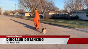 Nebraska woman walks dog while wearing dinosaur costume