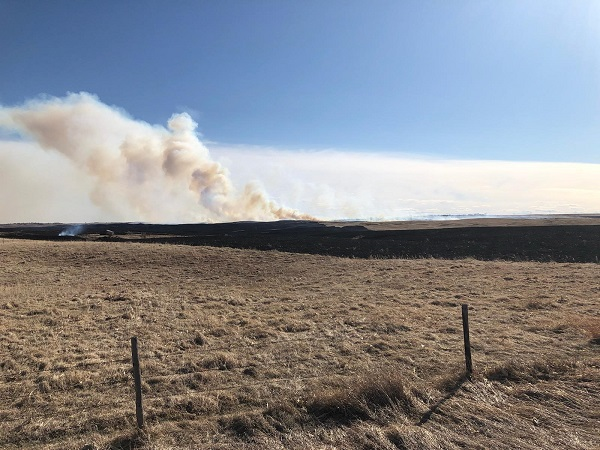 Large Grass Fire Requires Response From Multiple Area Agencies