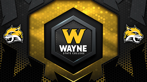 New Branding Added To Wayne State College Along With New Alternate Wildcat Logo, Paw Logo Will Remain As WSC Legacy