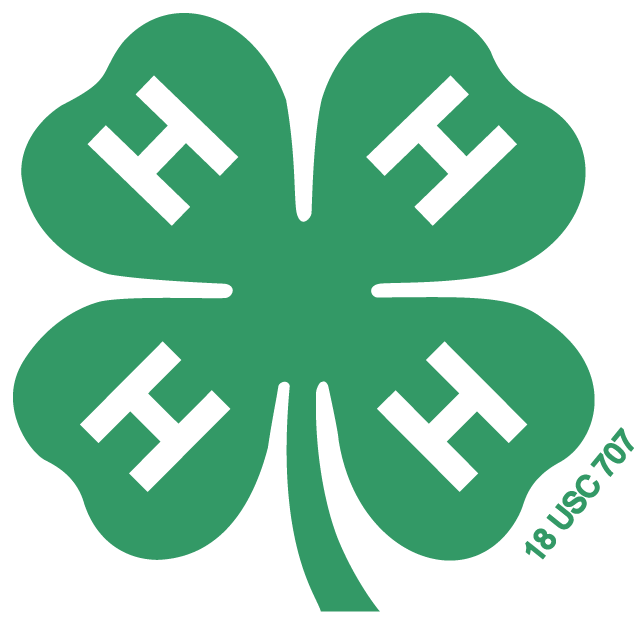Custer County Virtual 4-H Public Speaking Contest Held