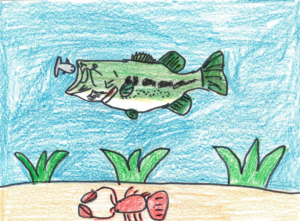 Winners Announced In Nebraska Fish Art Contest; Merna Student Places 3rd