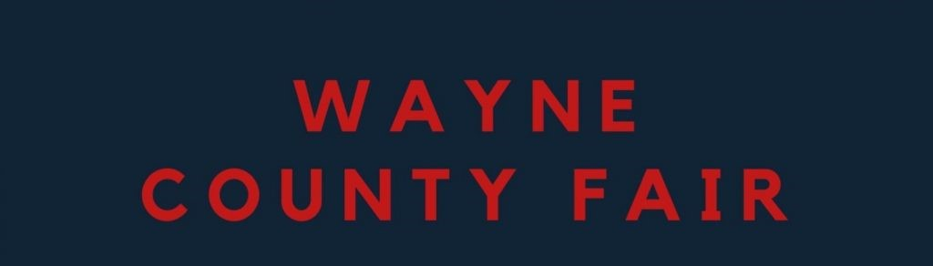 Wayne County Fair Postponed Until 2021, Was 'A Very Difficult Decision'