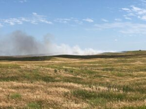 Wednesday Grass Fire Helped Along By Dry And Windy Conditions
