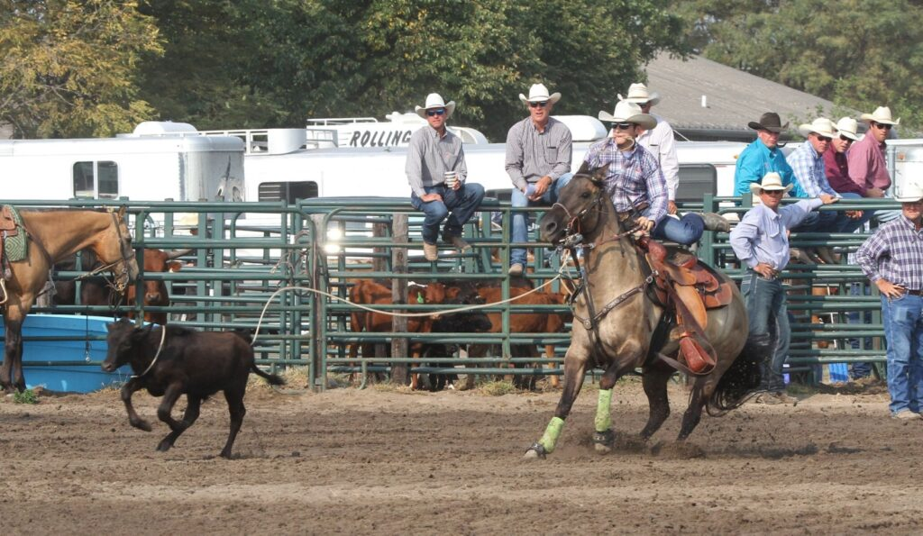 Area High School Cowboys and Cowgirls Compete in Lexington