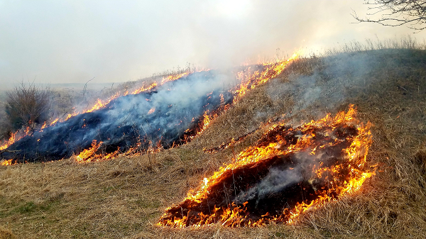 Prescribed Burns Planned On WMA's; Burns Planned In Custer And Sherman Counties