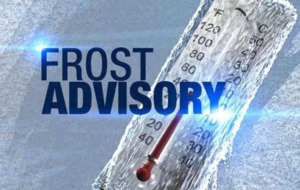 Frost advisory in effect from midnight to 9 am