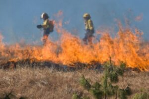 Critical Fire Conditions Across Nebraska; Are You Prepared For A Wildfire?