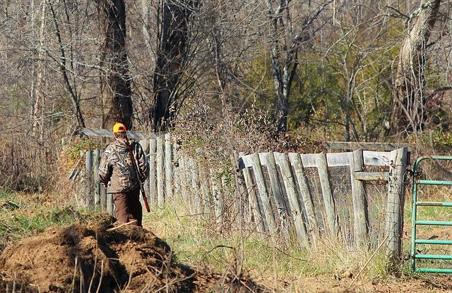 Firearm Deer Season Is Approaching! The NGPC Has Reminders For Hunters This Season