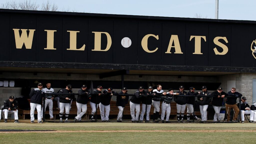 Wildcat Baseball Fall Signing Class Released