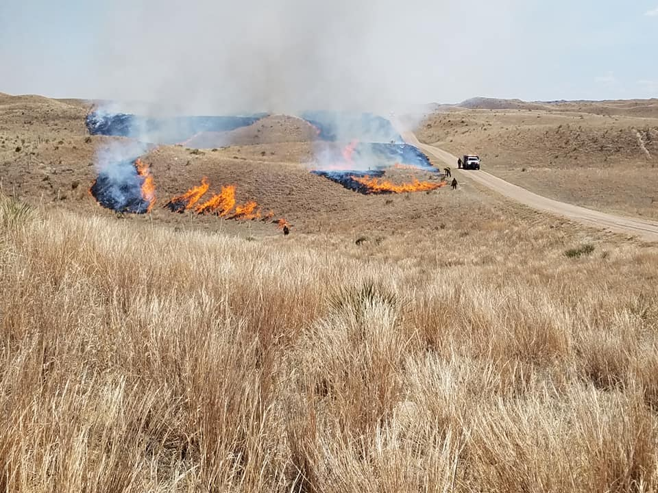 Prescribed Burn Today (April 21) South Of Bessey Ranger District