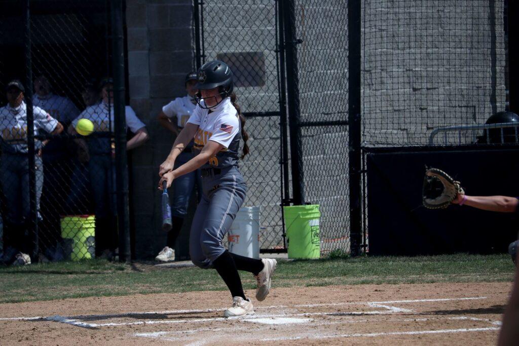 Wayne State Softball Falls On Home Diamond